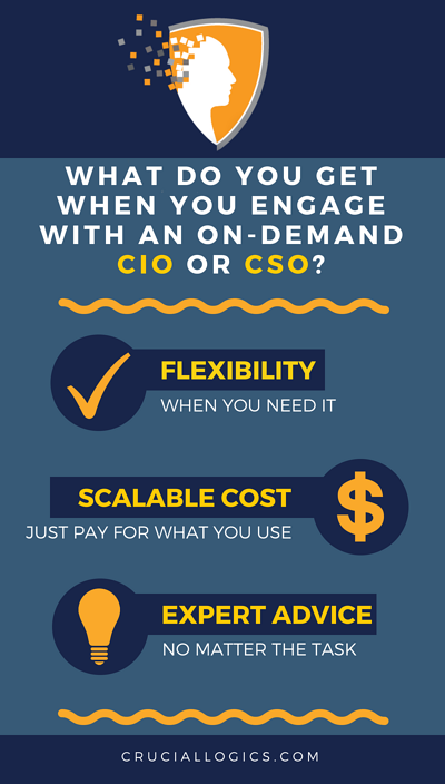 What do you get when you engage with an On-Demand CIO or CSO?